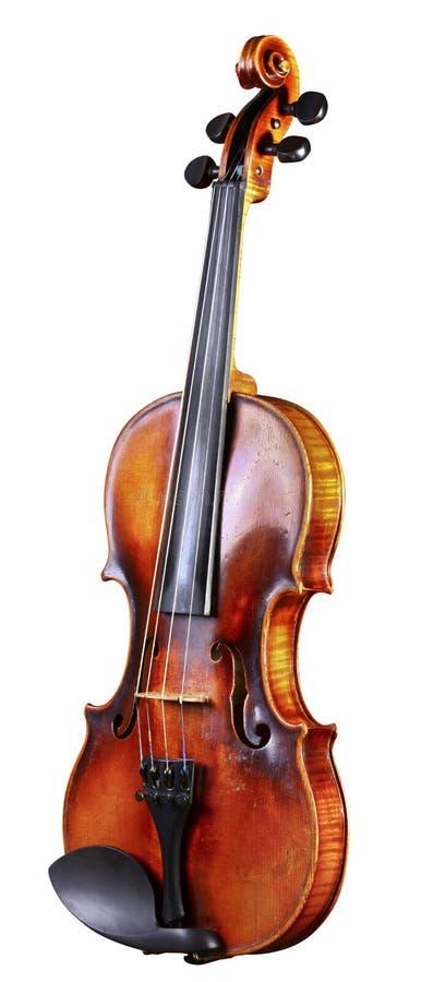 Cello stockfotos