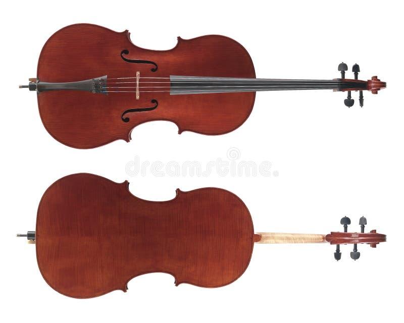 Cello lizenzfreie stockfotos