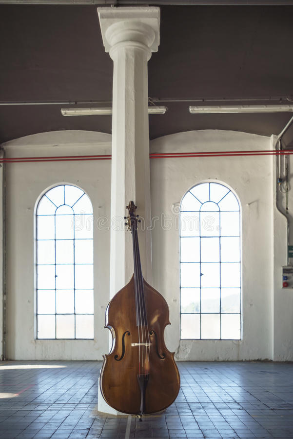Cello in an ampty vintage Location royalty free stock photo