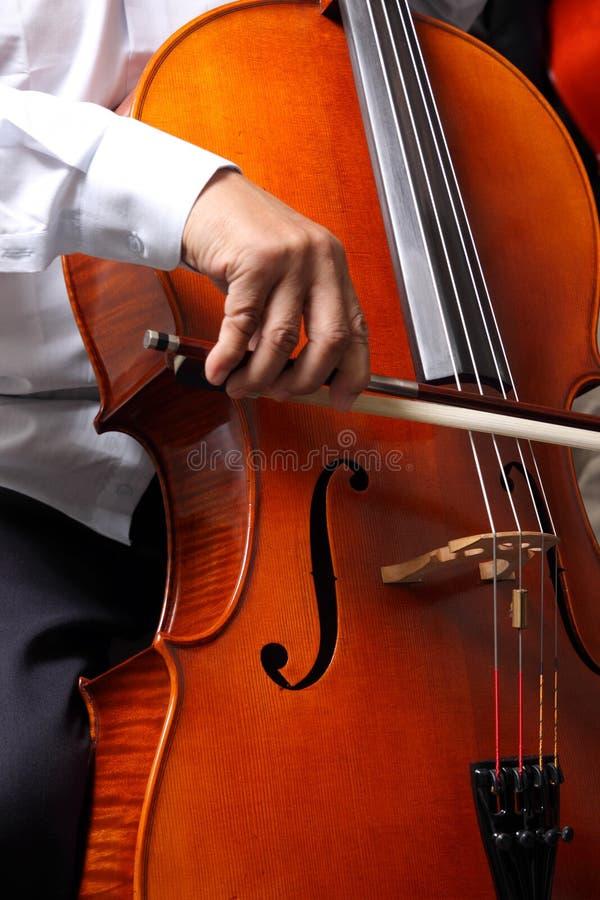 Cello Pizzicato stock afbeeldingen