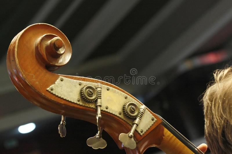 Cello scroll, head details with pegs. Details of cello: head, scroll, pegs, strings. Selective focus, blurred background royalty free stock image