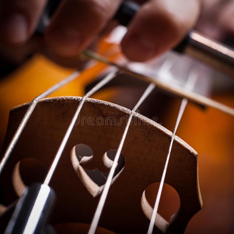 Cello strings royalty free stock photo