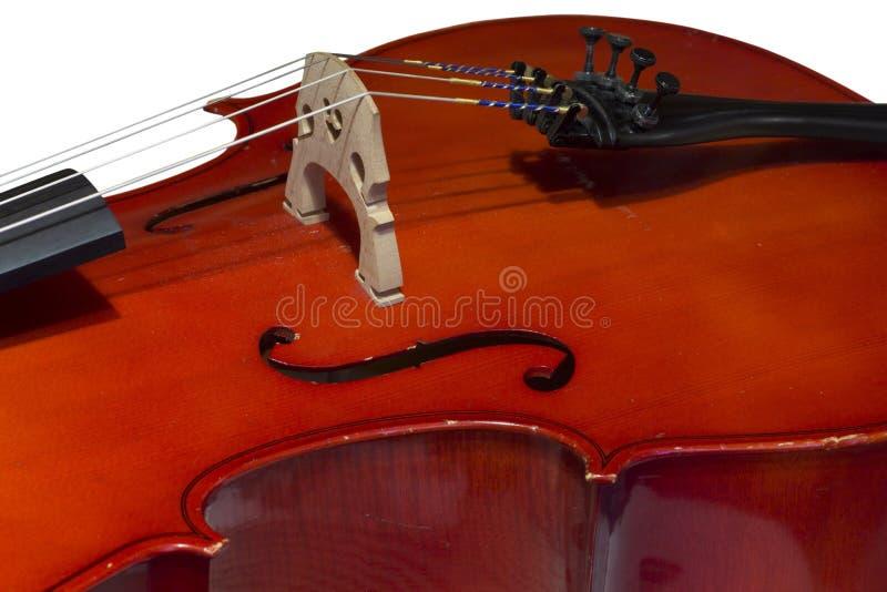 Cellodetail lizenzfreie stockfotos