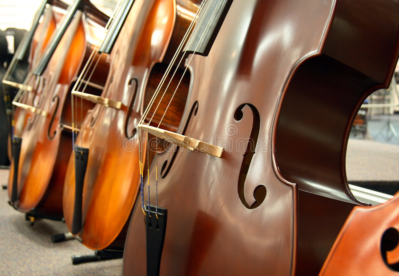 The Cellos. A row of cellos with shalow depth of field blurred background. First cello has a matte finish with strings in focus stock photography