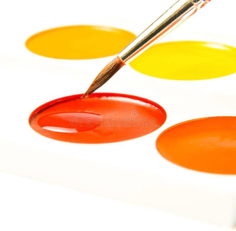 Cells with watercolor paint and brush for painting. White isolated background. Cells with watercolor paint and brush for painting. Close-up. White isolated stock photo