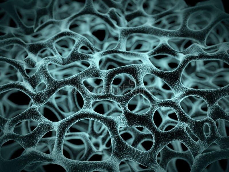 cellstruktur vektor illustrationer