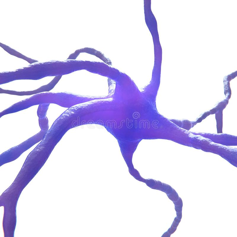 Cellula del neurone isolata su bianco illustrazione di stock