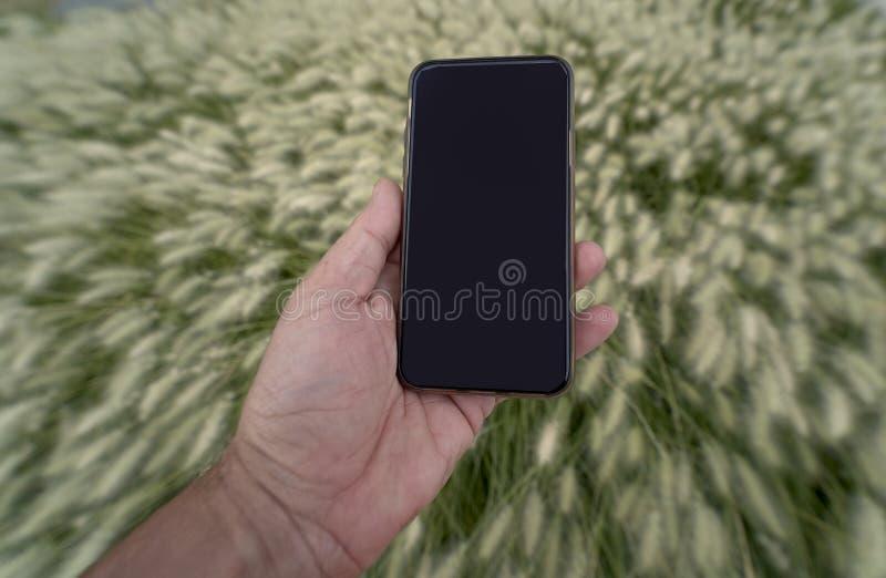 Cellulare nella mano sinistra immagine stock libera da diritti
