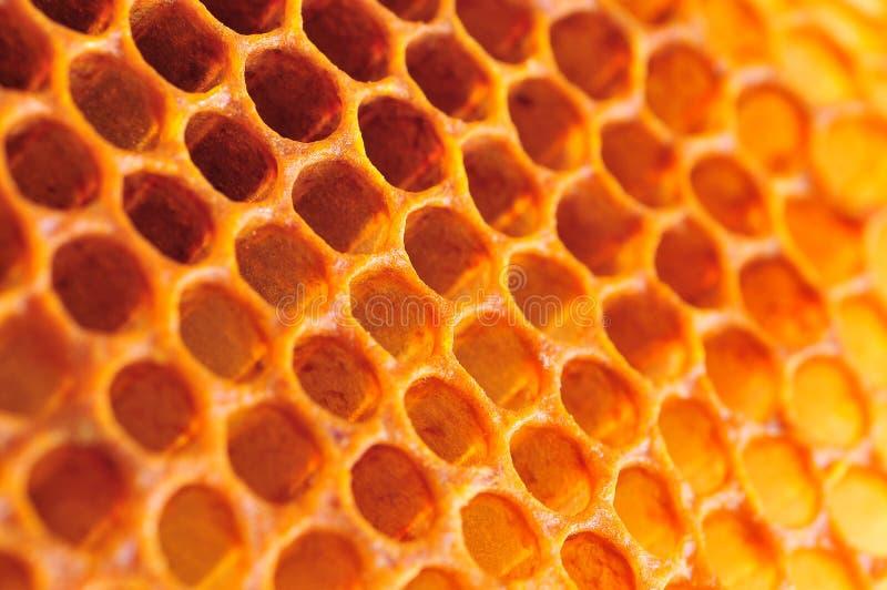 Cellule de miel photos stock