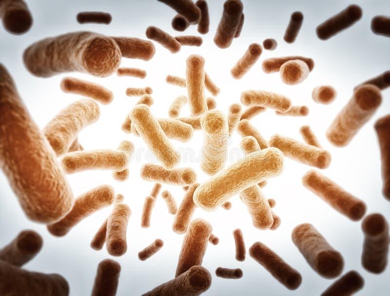 Cellule dei batteri illustrazione di stock