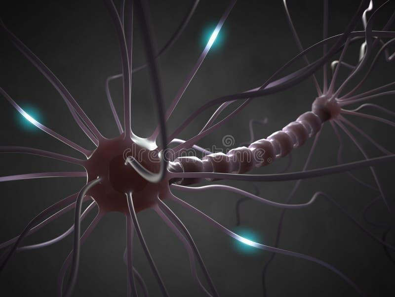 Cellule nerveuse images libres de droits