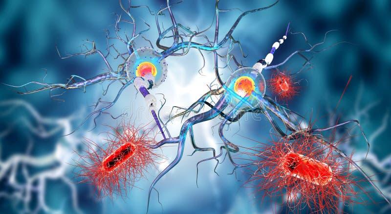 Cellule nervose illustrazione vettoriale