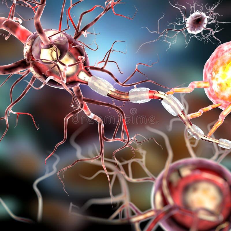 Cellule nervose, concetto per le malattie neurologiche, tumori e neurochirurgia illustrazione vettoriale
