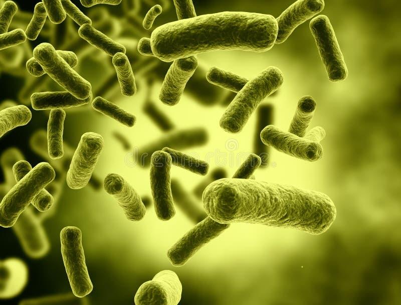 Cellules de bactéries illustration libre de droits