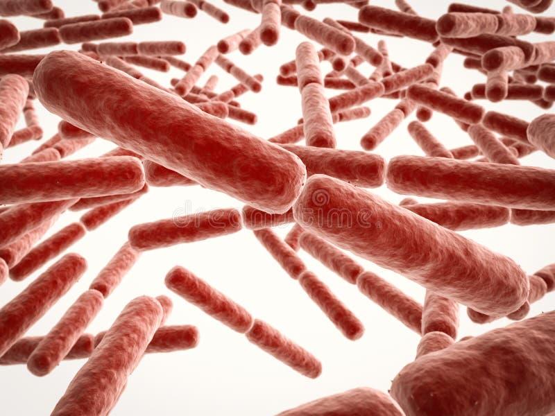 Cellules de bactéries de forme de bâton illustration de vecteur