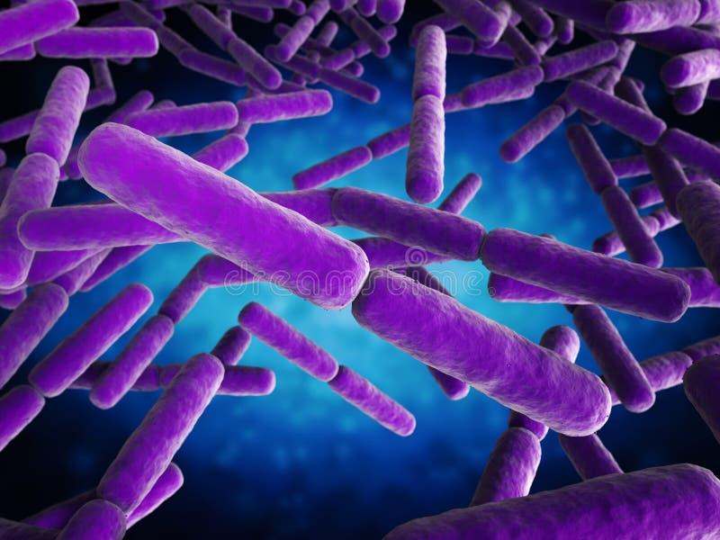 Cellules de bactéries de forme de bâton illustration stock