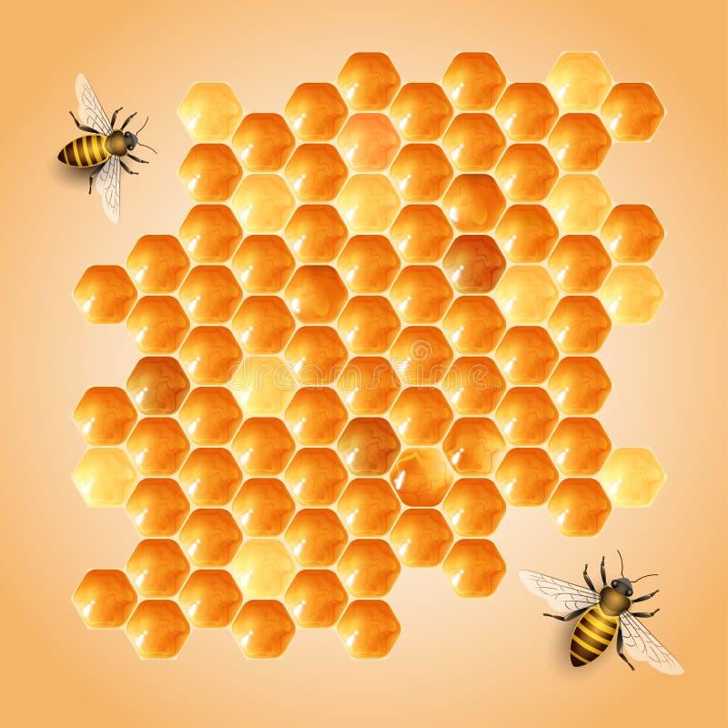 Cellules de miel illustration libre de droits