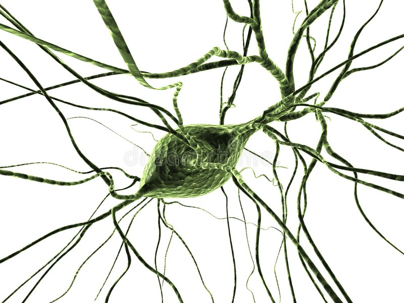 Cellules nerveuses illustration stock