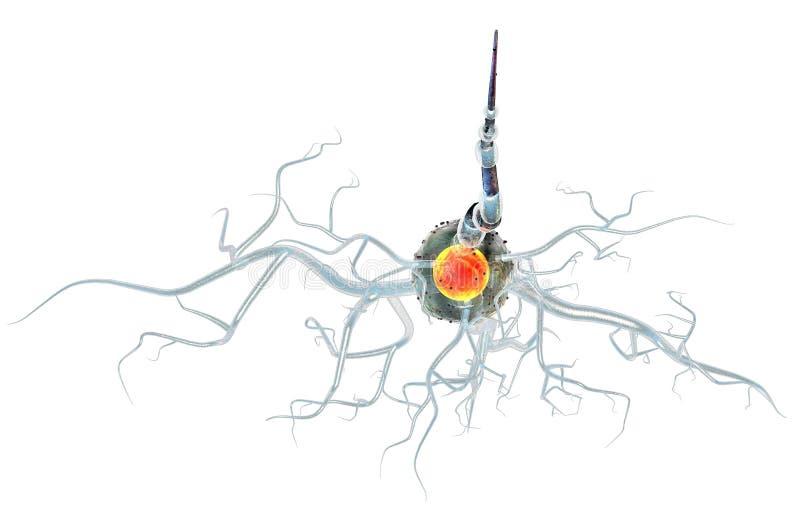 Cellules nerveuses d'isolement sur le fond blanc illustration de vecteur