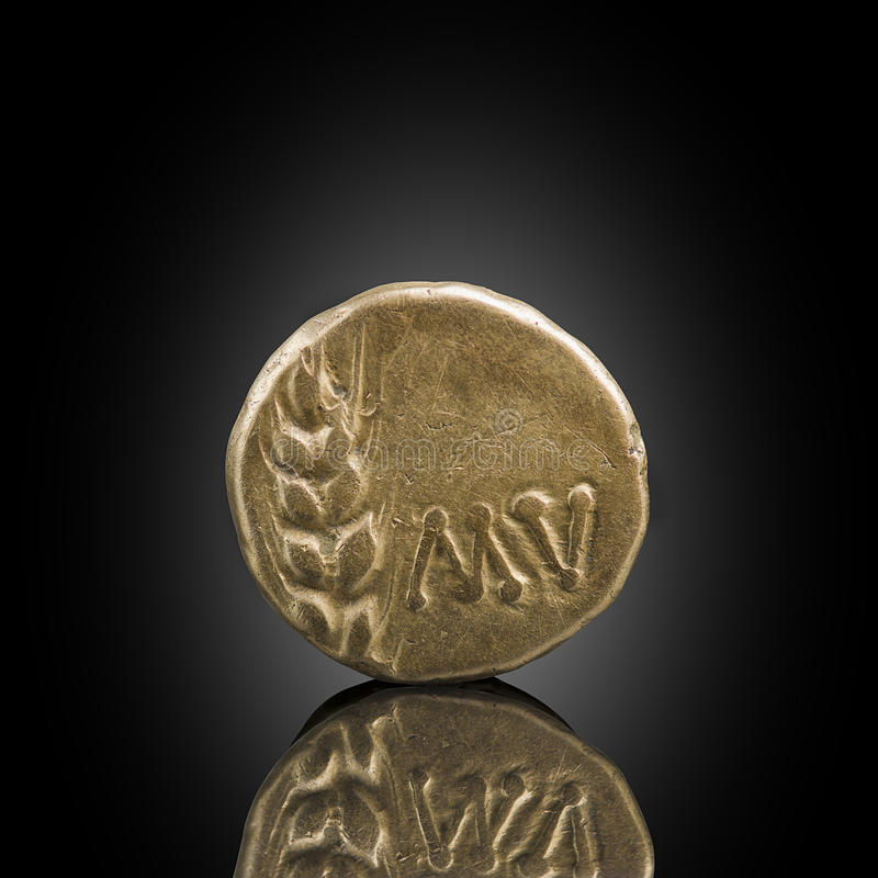 Celtic gold stater. Old Celtic coin showing ear of grain, expose. D on black reflecting glass, found in life dig by metal detector.England royalty free stock images