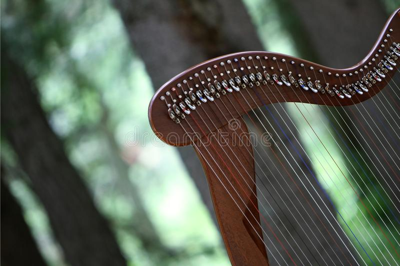 Celtic harp stock photography