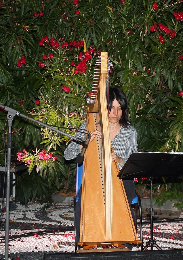 Celtic harp player during the Birkin Tree concert royalty free stock image