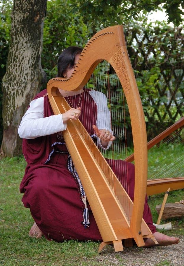 celtic harpa royaltyfria bilder