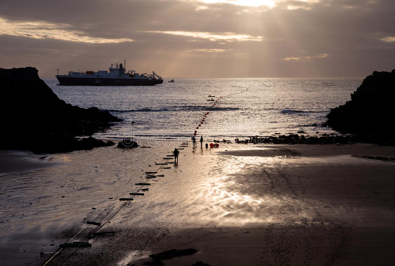 Download CeltixConnect Coming Ashore Stock Photo - Image of porthdaffach, north: 24262556