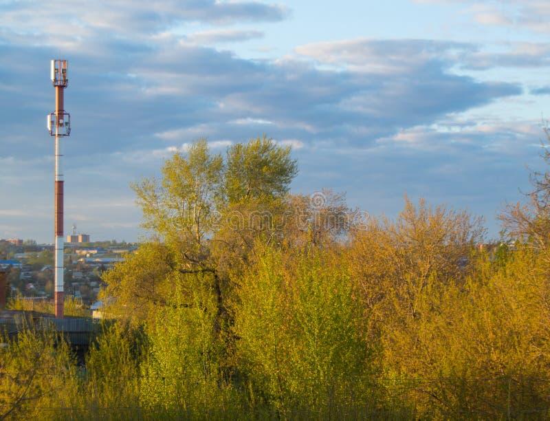 Celtoren van mobiel communicatiemiddel over de achtergrond van bomen en bewolkte hemel royalty-vrije stock foto
