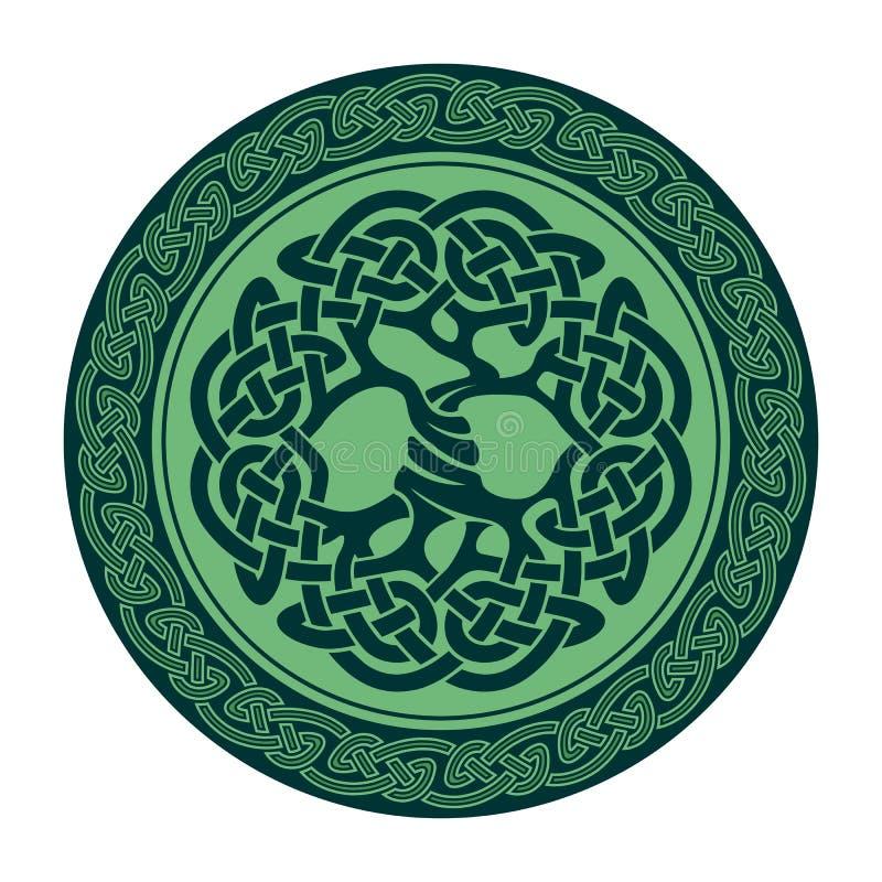 Celtycki drzewo życie royalty ilustracja