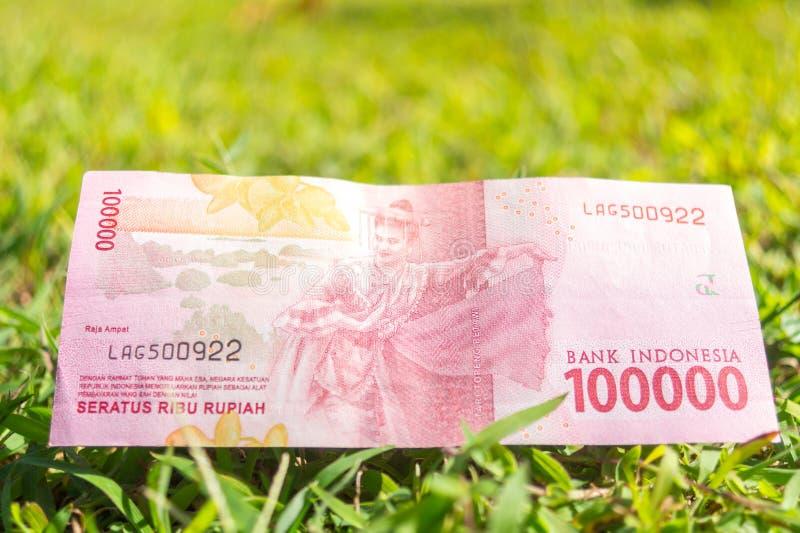 Cem mil papéis moeda da rupia na grama verde fotografia de stock royalty free