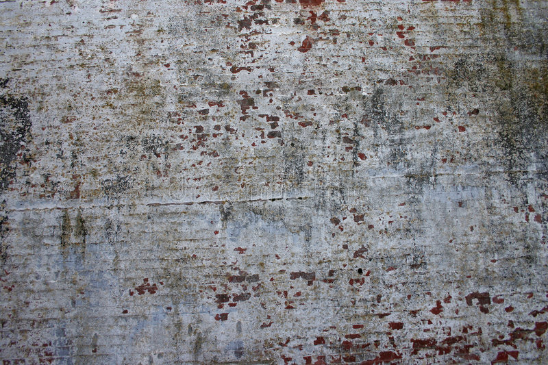 Cement Texture stock photography