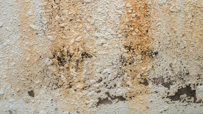 The cement wall texture background.  royalty free stock photography