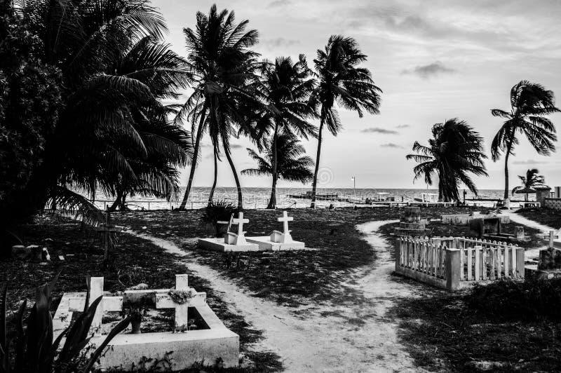 Cementerio con las palmas en una isla caribeña, calafate de Caye, Belice imágenes de archivo libres de regalías
