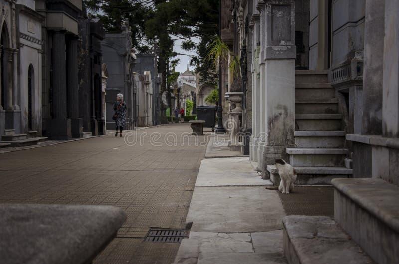 Cementerio de la recoleta Buenos aires Argentina royalty free stock photo