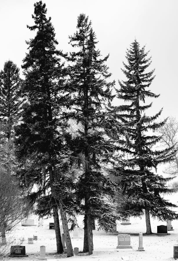 Download Cementerio del invierno foto de archivo. Imagen de tombstone - 7151762