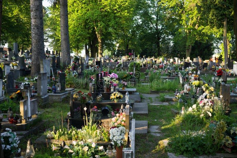 Cementerio durante día de verano con las flores y los árboles fotos de archivo