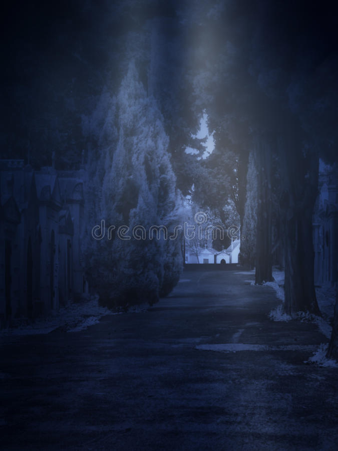 Cementerio en una noche de niebla imagen de archivo libre de regalías