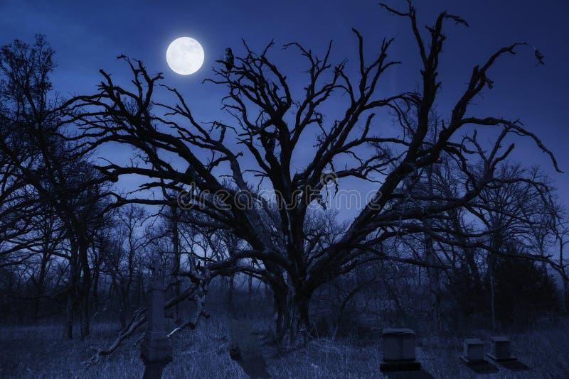 Cementerio fantasmagórico de Halloween con el búho y la Luna Llena fotos de archivo