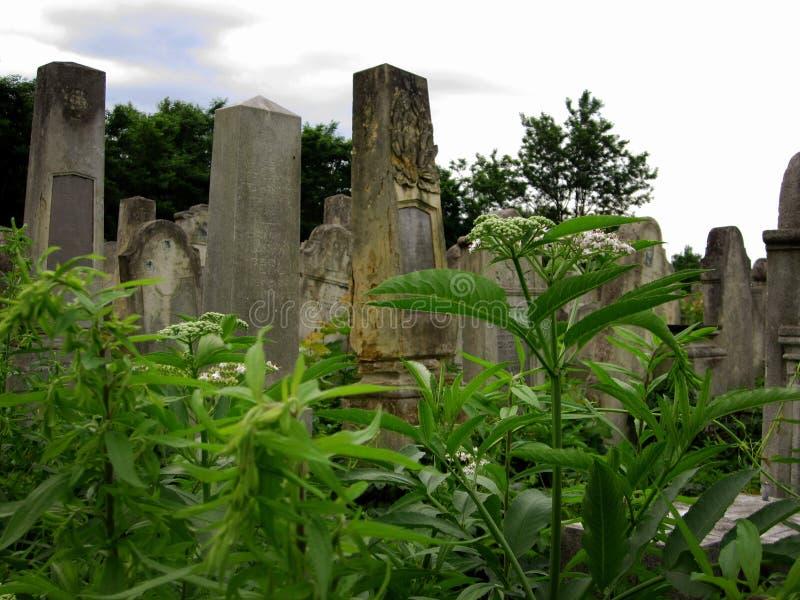 Cementerio judío abandonado viejo con los sepulcros de piedra entre los árboles imagenes de archivo