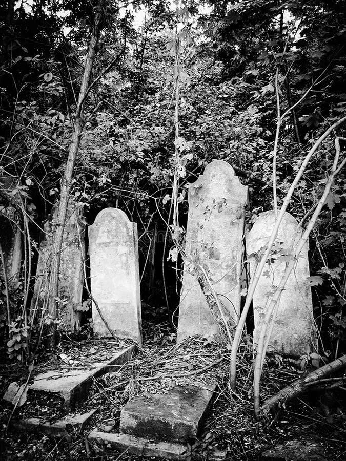 Cementerio judío abandonado viejo con los sepulcros de piedra entre los árboles imagen de archivo