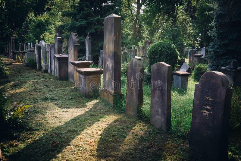 Cementerio judío viejo histórico en Wroclaw, Polonia Fondo para el diseño y el texto de Halloween fotos de archivo libres de regalías