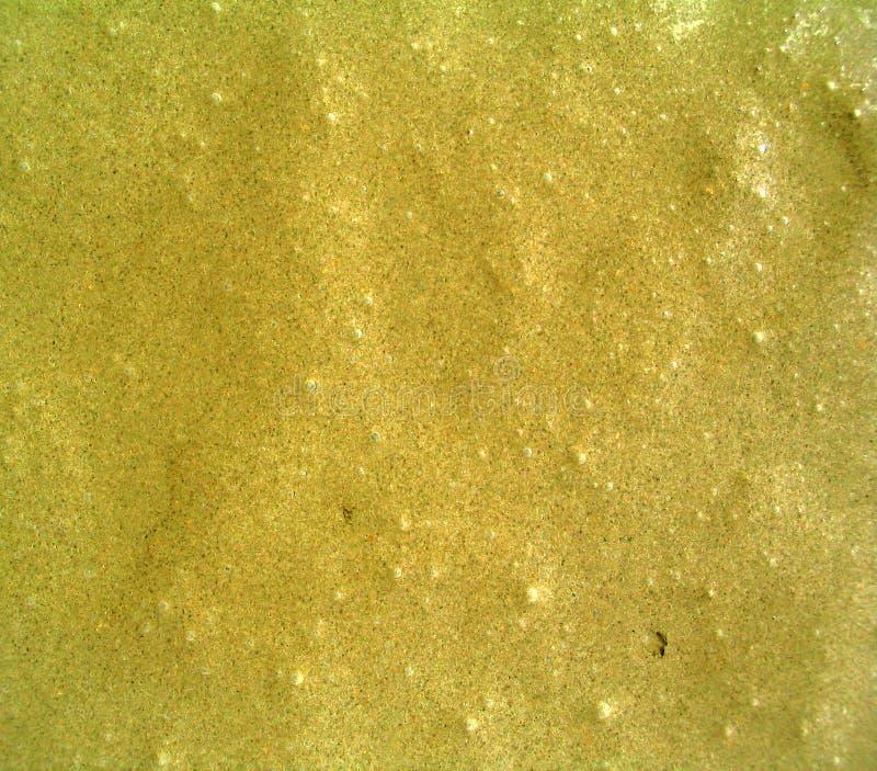 Cemento Bagnato Immagini Stock