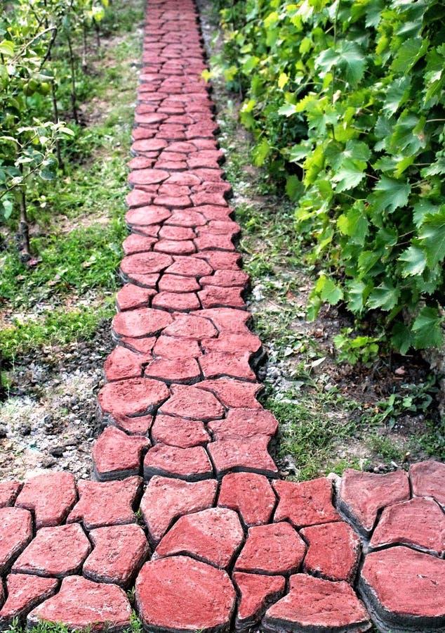 Cemento timbrato nel giardino immagini stock libere da diritti