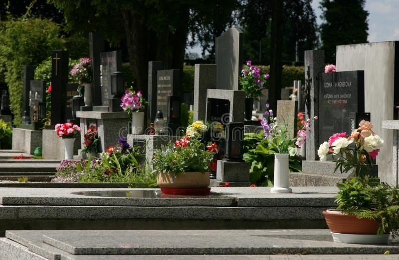 Cemetary with flowers stock image