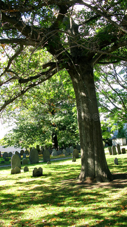 Free Cemetery Royalty Free Stock Photos - 12472928