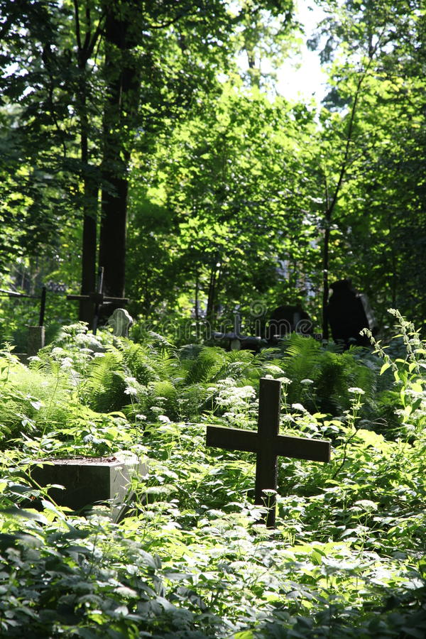 in the cemetery. stock photography