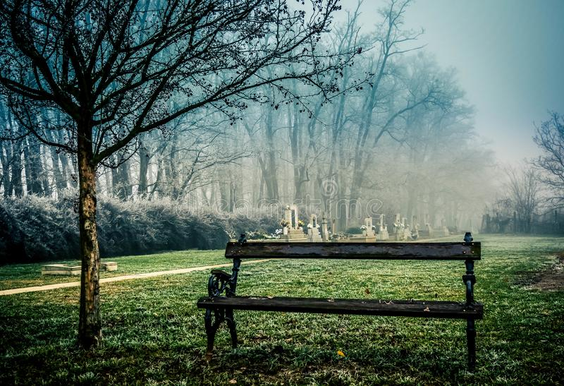 Spooky cemetery in fog. Cemetery in Hungary. It looks super creepy and spooky on this misty November day royalty free stock images