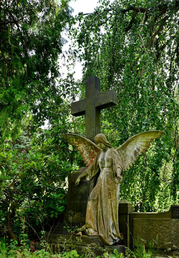 Cemetery, Statue, Grave, Tree royalty free stock images