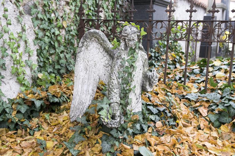 Cemetery stone sculptures, angel covered with ivy and dry autumn leaves. Cemetery stone sculptures, angel covered with ivy green leaves and dry autumn leaves royalty free stock image